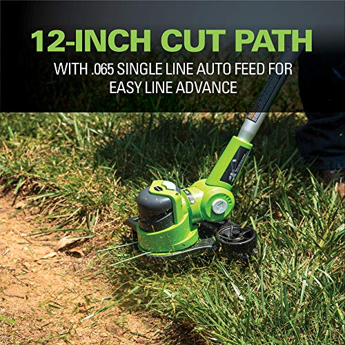Greenworks 24V 12 inch String Trimmer with 2Ah Battery and Charger 21342