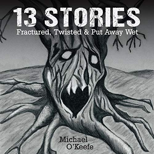 Couverture de 13 Stories