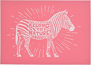 Amazon com: zebra stencil - Screen Printing / Printmaking