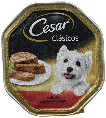 César Tarrina para perros clásicos de buey de 150g [pack de 14]