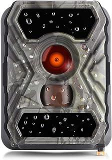 SecaCam Raptor Full HD 52 Grados Cámara de vigilancia   Cámara de Caza – Pack Premium, cámara Trampa, visión Nocturna