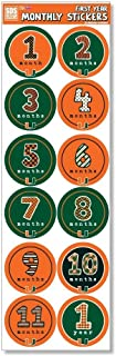 Elite Fan Shop NCAA Baby First Year Monthly Stickers