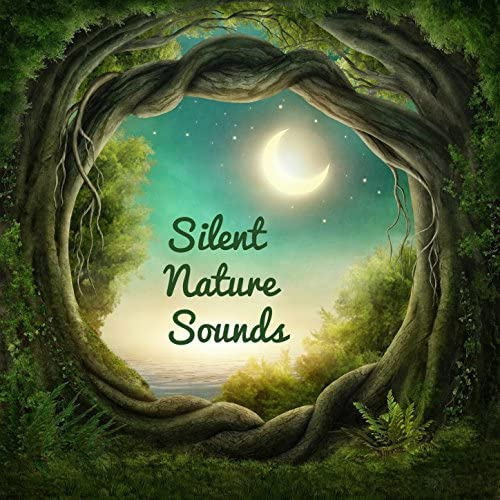 Nature Sounds, Meditation Relaxation Club, Nature Recordings