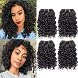 Selina Brazilian Curly Hair Bundles 4 Bundles Kinky Curly Short Human Hair Brazilian Virgin Human Hair 50 Gram/Bundle (8'8'8'8', Natural Color)