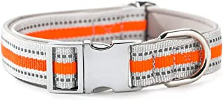 HIPIPET Highly Reflective Dog Collar with Comfortable Soft Lining Padded and Metal Buckle for Medium and Large Dogs