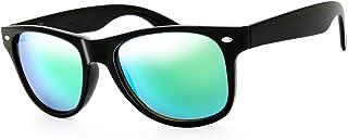 Classic Shaped Horn Rimmed Sunglasses Spring Temple for Men Women