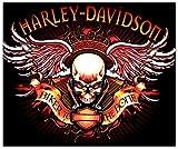 Treasure Chest Shoppe New Harley Davidson Bad Biker to The Bone Skull Wings Plush Fleece Blanket Throw 50x60 for Lap Sofa Bed Wall Motorcycle Home Decor