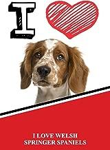 I Love Welsh Springer Spaniels: Isometric DOT Paper Portrait Notebook 120 pages 6