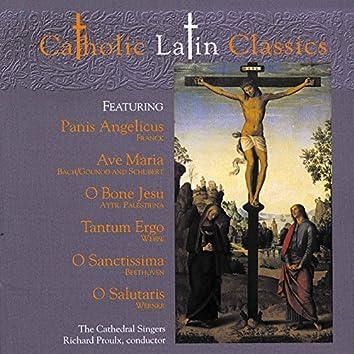 Catholic Classics, Vol. 4: Catholic Latin Classics