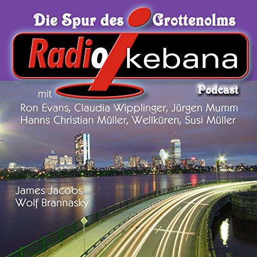 Radio Ikebana - Die Spur des Grottenolms (feat. Gerhard Polt, Campino)