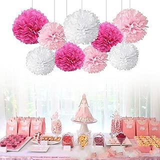 iShyan 18pcs Tissue Hanging Paper Pom-poms, Flower Ball Wedding Party Outdoor Decoration Premium Tissue Paper Pom Pom Flowers Craft Kit(Pink & White)