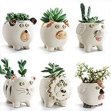 SUN-E 3.7 Inch Cute Animals Cartoon Farmhouse Style Ceramic Succulent Plant Pot Cactus Plant Pot Flower Pot Container Planter Bonsai Pots with Drainage Hole 6 in Set