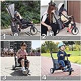 Zoom IMG-1 smartrike str5 triciclo con certificazione