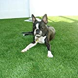 Artificial lawn Synthetic Turf Artficial Grass for Dog Pet Area Indoor Outdoor Landscape, 2'x4', Dark Green