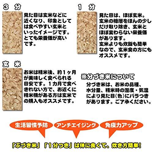『山形県産 ひとめぼれ 30kg 紙袋 令和元年度産 (7分づき 9.3kg×3袋)』の1枚目の画像
