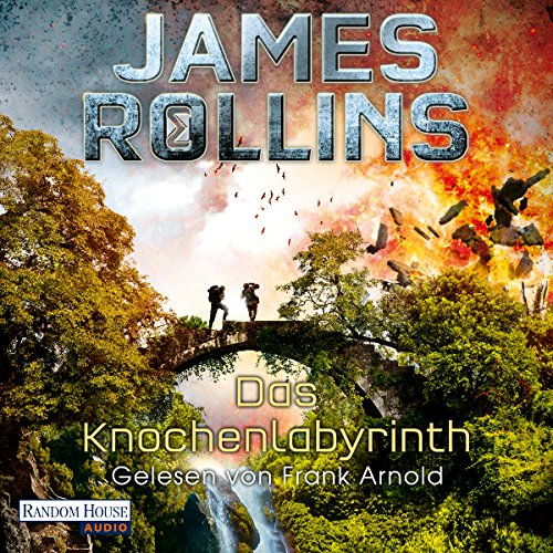 Couverture de Das Knochenlabyrinth