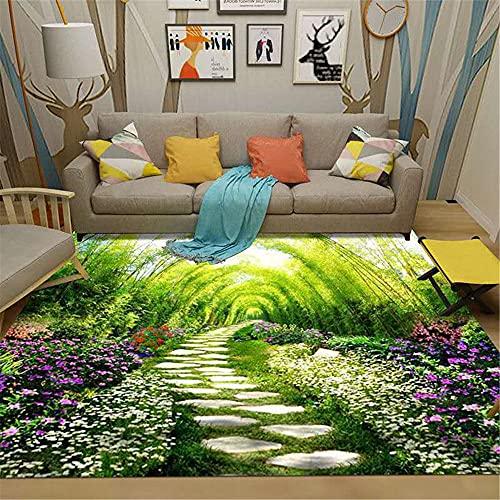 CCTYJ Verde césped Piedra trayectoria Tridimensional patrón de Alta definición de impresión Suave Sala de Estar sofá Dormitorio Pasillo decoración de la carpeta-80x160cm Home Alfombra De Salón Modern