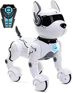 Remote Control Robot Dog Toy, Robots for Kids, Rc Dog Robot Toys for Kids 3,4,5,6,7,8,9,10 Year Old and up, Smart & Dancing Robot Toy, Imitates Animals Mini Pet Dog Robot…