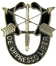 special forces crest lapel pin