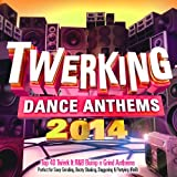 Twerking Dance Anthems 2014 - 40 Top Twerk It Bump n Grind Anthems - Perfect for Sexy Grinding, Booty Shaking, Daggering & Partying