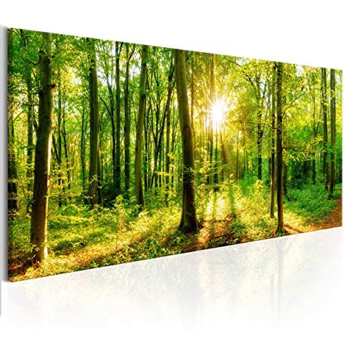 decomonkey Bilder Wald 150x50 cm XXL 1 Teilig Leinwandbilder Bild auf Leinwand Vlies Wandbild Kunstdruck Wanddeko Wand Wohnzimmer Wanddekoration Deko Baum Bäume Natur Landschaft