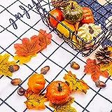 Zsroot Herbst Dekoration Tischdeko Set, 166 Stück Herbstdeko Zubehör Gehören Blätter Deko, Zierkürbis, Tannenzapfen Deko und Eicheln deko für Herbst, Thanksgiving und Halloween Dekorationen - 2