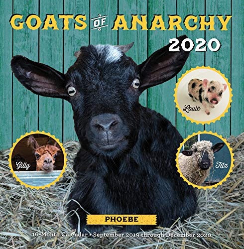 Goats of Anarchy 2020: 16 Month Calendar September 2019 Through December 2020