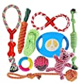 FONPOO Dog Toys Avoiding Dogs Boredom Anxiety Dog Chew Toys for Medium Dogs Puppy Toys Dog Birthday Gift Sets