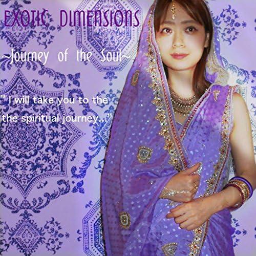 Exotic Dimensions