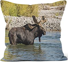 Nine City Bull Shiras Moose Crossing a River Throw Pillow Cushion Cover,HD Printing Decorative Square Accent Pillow Case,28