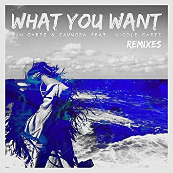 What You Want  (feat. Nicole Gartz) [Remixes]
