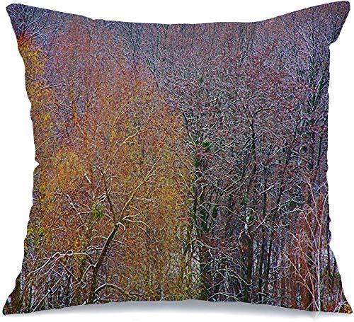 Funda de Cojine Throw CojínImpresionismo Verde Expresionismo Árboles Textura Nevado Bosque Belleza Árbol Cielo Natural Naturaleza Diseño Fundas para almohada 45X45CM