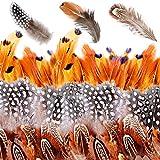 350 Piezas plumas manualidades,plumas de colores,plumas naturales de colores,Plumas de la Decoración,Plumas Naturales Coloridas