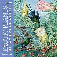 Kew Gardens - Exotic Plants by Marianne North Mini Wall calendar 2021 (Art Calendar) (Mini Calendar)