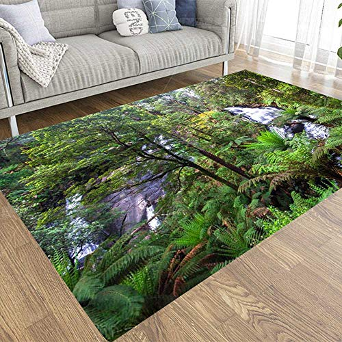 Capsceoll 2X3 Area Rugs Falls in The Great National Park Victoria Australia Otway Carpet Suitable for Children Pets for Home Living Room Indoor Décor