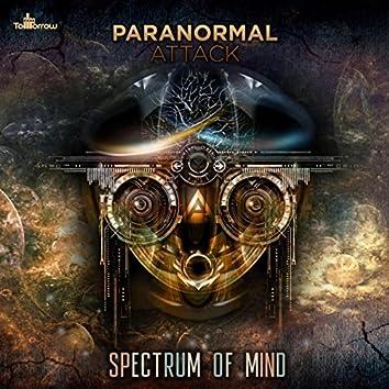 Spectrum of Mind