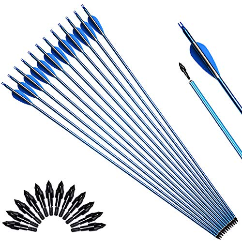 XGEEK 30in Carbon Arrows Shafts,Practice Arrows for Target Shooting,Compound Bow & Recurve Bow Arrows for Hunting,with Removable Tips (Carbon 1)