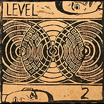 Level 2 (Vol. 2)
