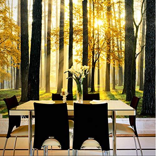 Fotobehang sticker zonnig bos 3D vlies muurschildering voor slaapkamer woonkamer keuken muurkunst decoratie 400x280cm