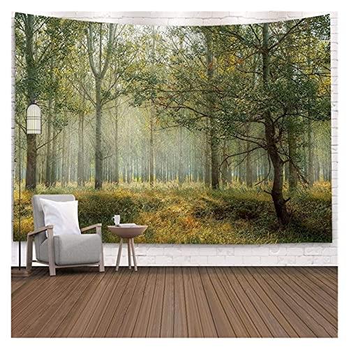 Tapiz Pared Gran tapicería hermosa bosque natural pared grande colgando pared pared colgando pared bohemia tapices Mandala Wall Art Decor Colgar en la Pared ( Color : 22 , tamaño : 230CM X 180CM )