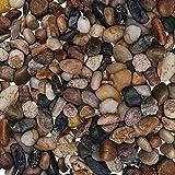 sassi decorativi per vasi - pietre per acquario acqua dolce decorative assortite da 3,6kg (da 1,4 a 2,6 cm) - ciottoli sassolini decorativi per vasi piante, casa, fioriere, acquario e vasi di fiori