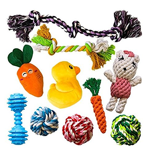 AMZpets 10 Dog Toys for Small Dogs and Puppies. Squeaky Toys | Rope Toys | Plush Games | Chewing Ropes | Balls | Rubber Bone | Carry Bag. Variety Playing Toys Set for Toss and Tug Play.