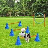 X XBEN Hund Agility Set, Agility-Ausrüstungs-Set für Hunde für Haustiere, Hunde, Outdoor-Spiele, Training, Training, ø 23 × 30 cm/Kegelhürden, ø 60 × cm/Stange, ø 60 cm/Ring, orange/Blaue - 4