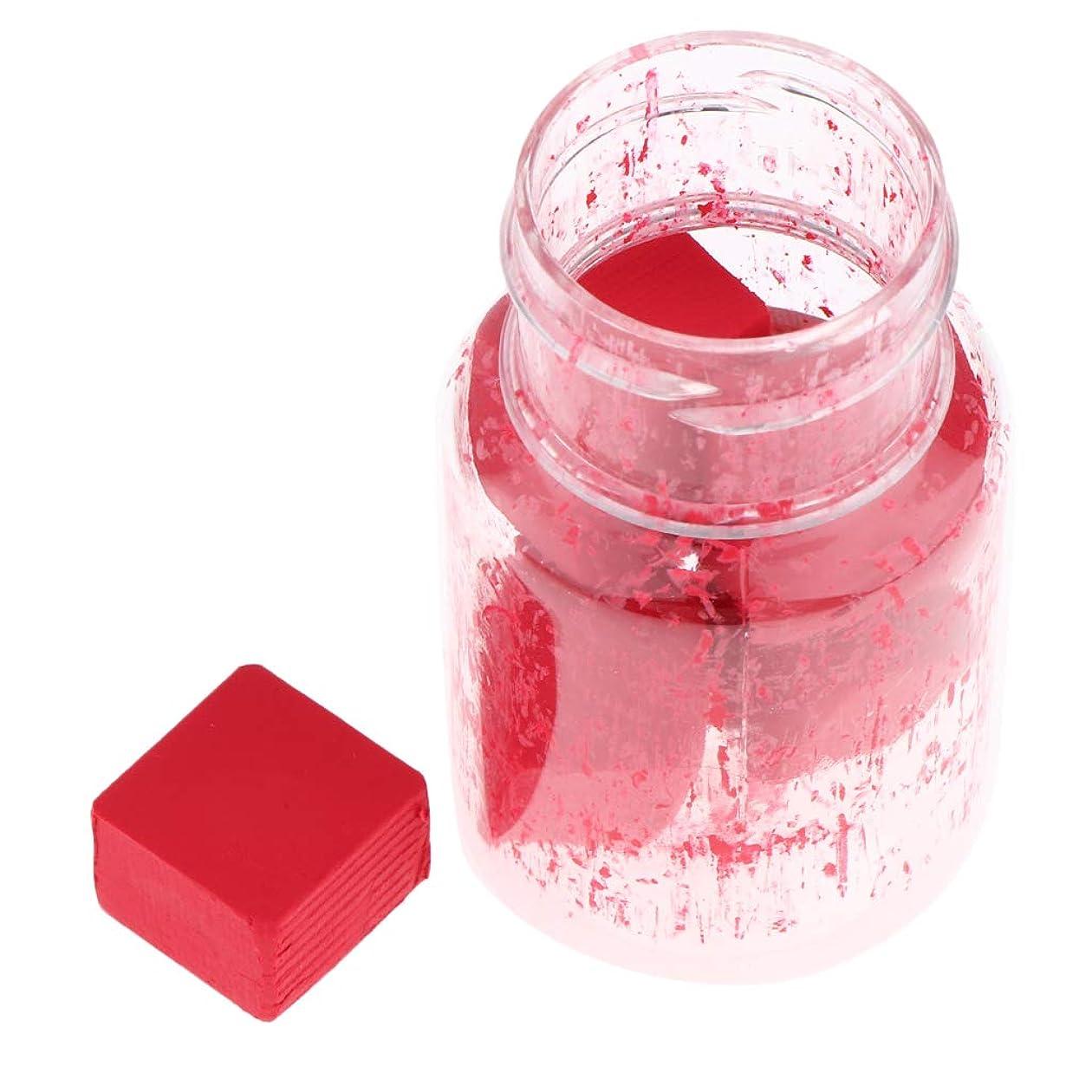 届ける苦情文句入浴T TOOYFUL DIY 口紅作り リップスティック材料 リップライナー顔料 2g DIY化粧品 9色選択でき - B