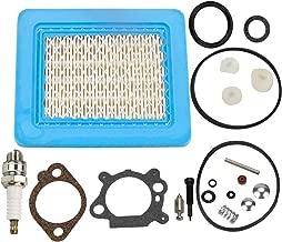 craftsman snowblower carburetor repair kit
