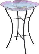 Peaktop 3211411 Garden Handpainted Floral Fusion Glass Birdbath with Metal Stand, 21.2
