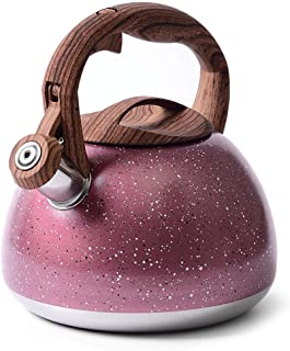 MOKIKA 2.8 Quart Whistling Tea Kettle, Induction Natural Stone Marble Teapot with Anti-Hot Wooden Handle, Stainless Steel ...