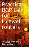 Practical BGP Lab for Huawei routers (English Edition)