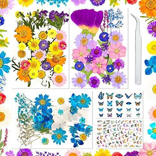 Sirecal Real Getrocknete Gepresste Blumen 202 Stück Getrocknete Blumen Blätter zum Basteln, Künstliche Gepresste Blumen für Harz DIY Kerzenschmuck Nail Art Crafts Blumendekorationen