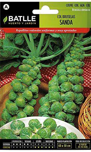 Batlle Gemüsesamen - Rosenkohl Sanda (2400 Samen)
